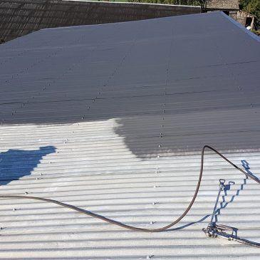 Czyszczenie i malowanie dachu i kominów.
